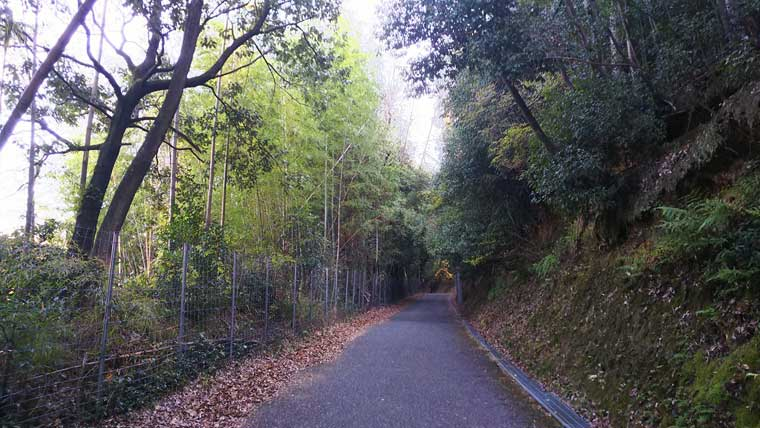 神峯山への参道