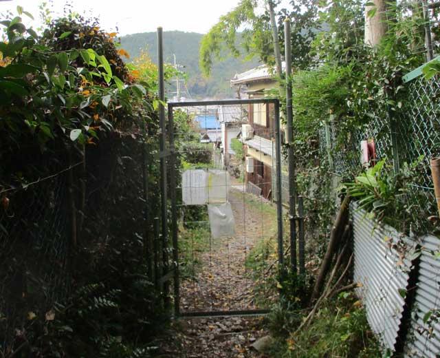 神峯山寺近道の扉