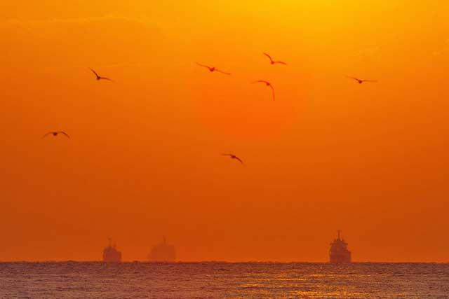 海運イメージ