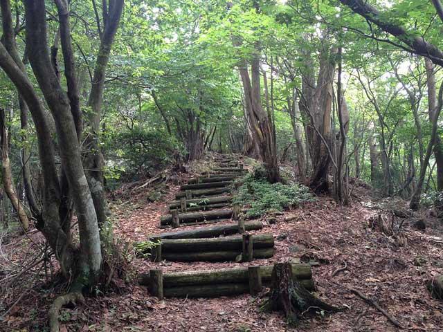 三峯神社奥宮への参道