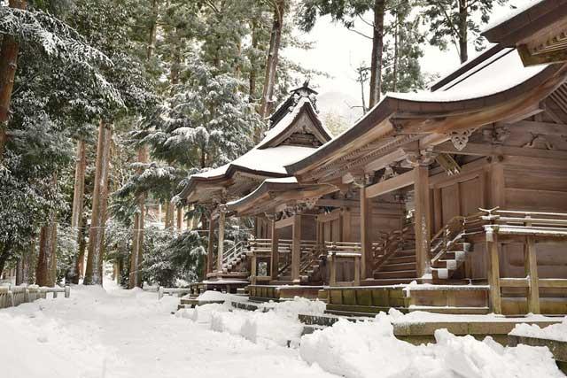 弥彦(彌彦)神社