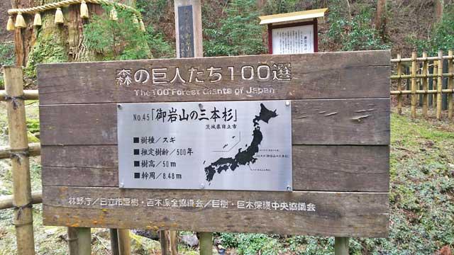 森の巨人たち百選の看板