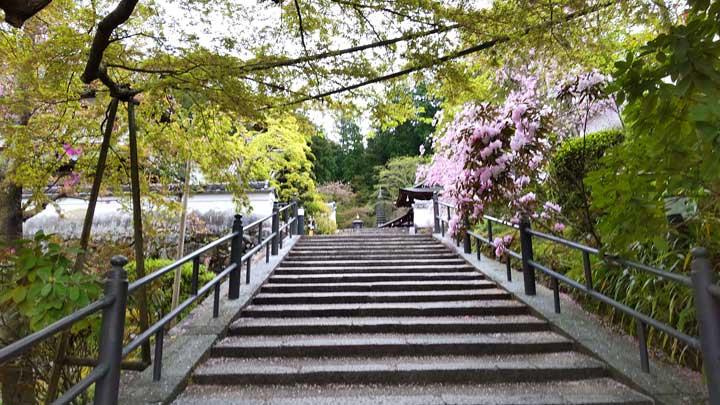 岡寺境内の階段